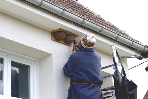 pose de nichoir à hirondelles de fenêtre